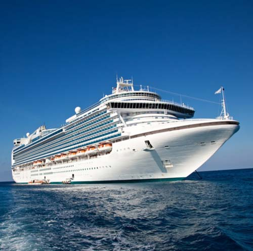 The Cruise Sector